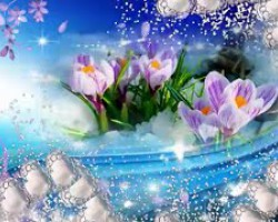 ♫♥♫ Wiosenne marzenia ♫♥♫